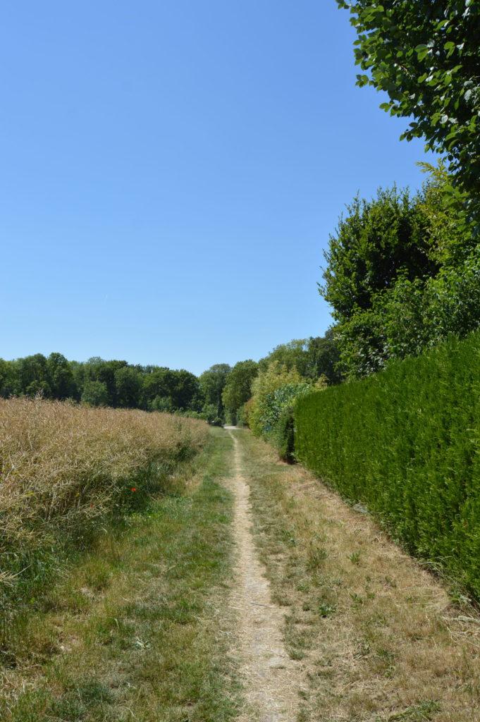 Chemin Salouël